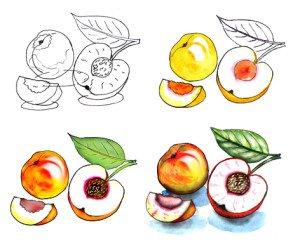 Рисуем персик