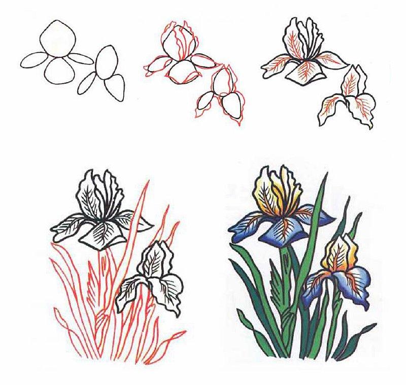 Рисуем клумбы с цветами поэтапно